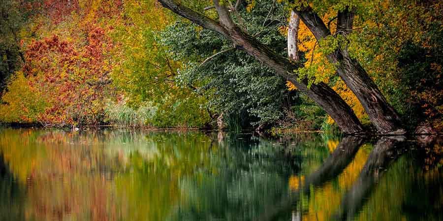 новини Перник, есен, любопитно есен, факти есен