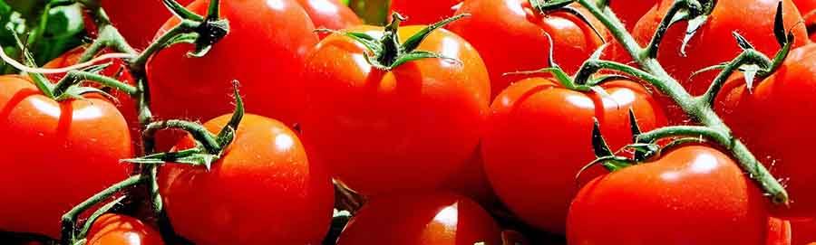 доматена диета, домати бръчки, домати при, здраве Перник, против бръчки