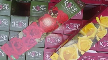 рози радомир общинско предприятие